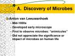 discovery of microbes