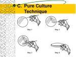 pure culture technique9