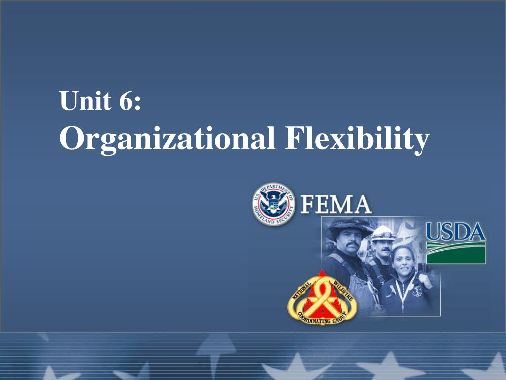 unit 6 organizational flexibility l.