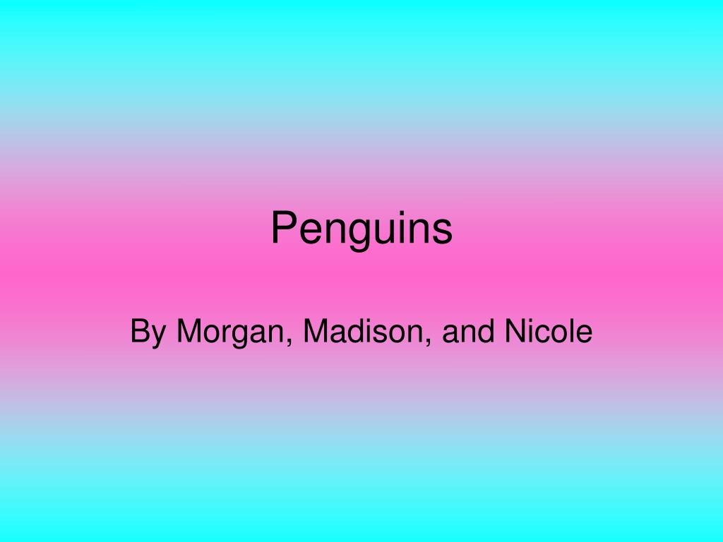 penguins l.