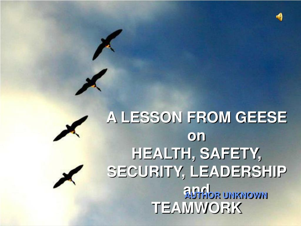 a lesson from geese on health safety security leadership and teamwork l.