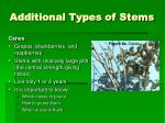 additional types of stems
