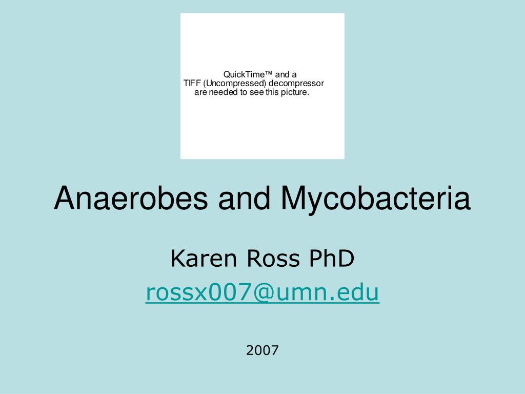 anaerobes and mycobacteria l.