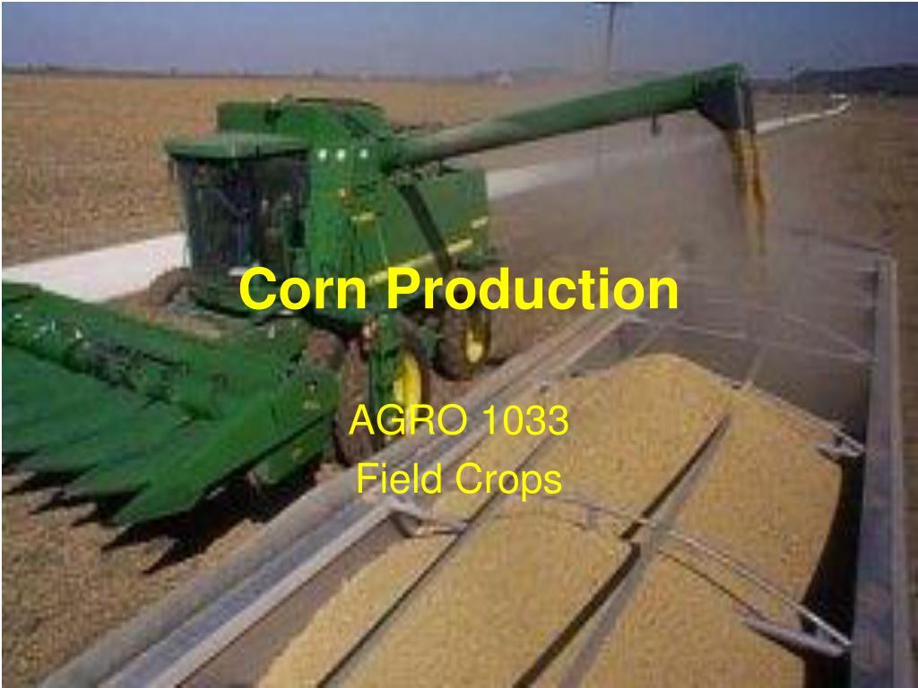 corn production l.