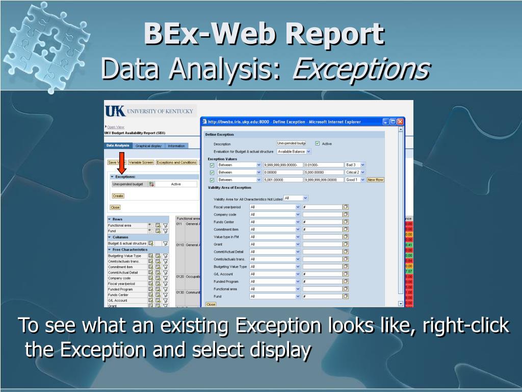 BEx-Web Report