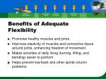 benefits of adequate flexibility