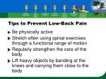 tips to prevent low back pain