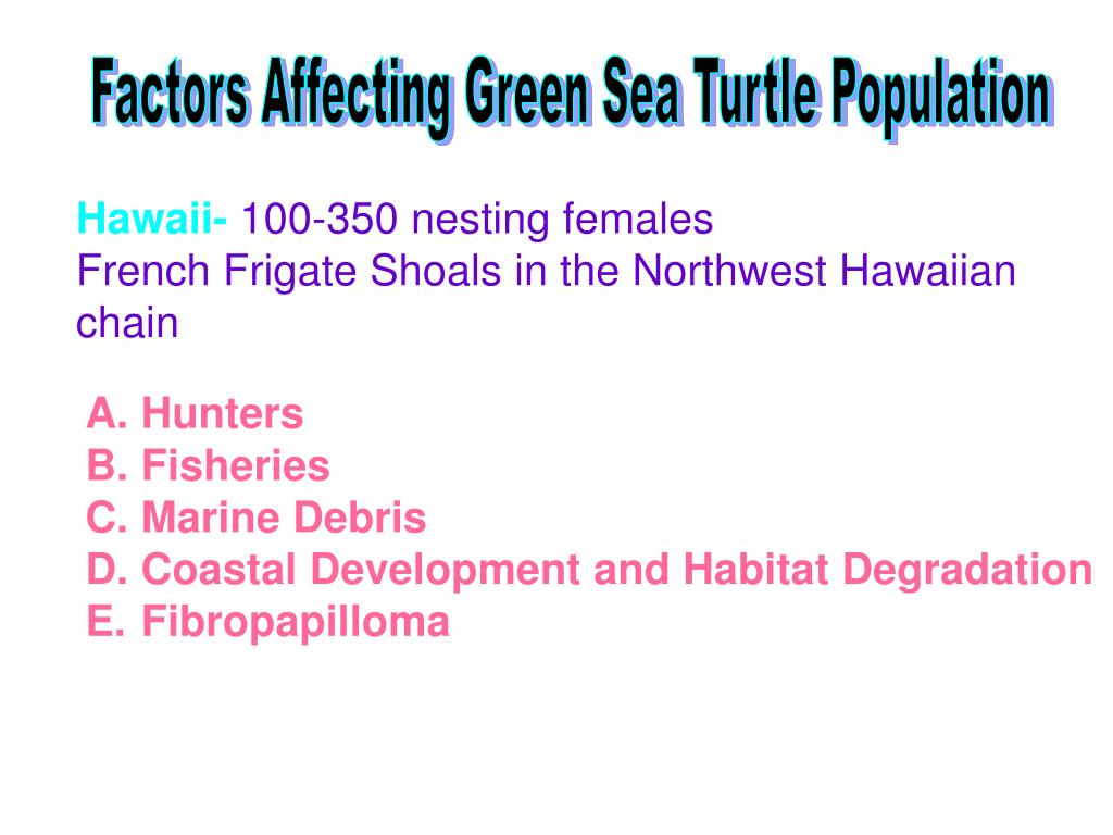 Factors Affecting Green Sea Turtle Population