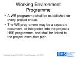 working environment programme11