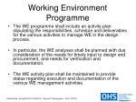 working environment programme13