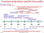 functions of dynamics and the time scales