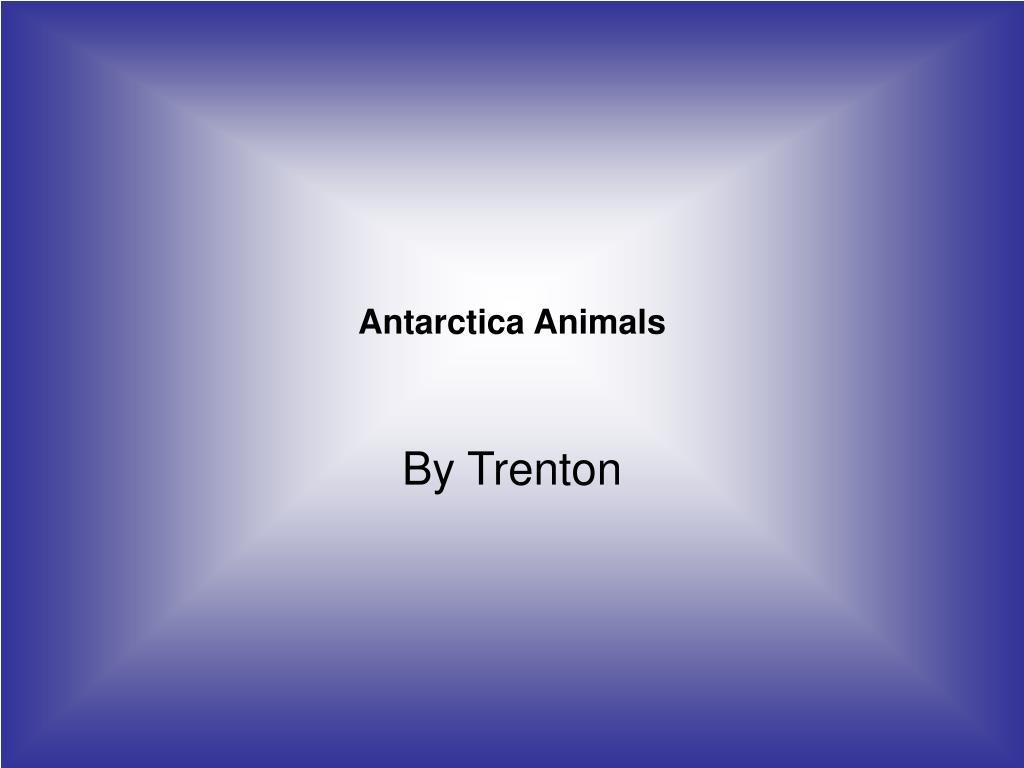antarctica animals l.
