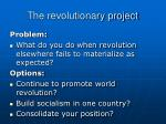 the revolutionary project