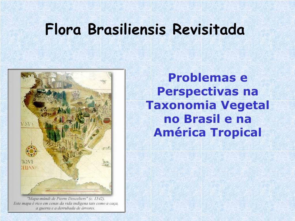 flora brasiliensis revisitada l.
