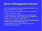 birds of management concern
