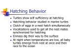 hatching behavior