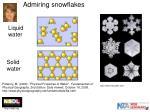 admiring snowflakes