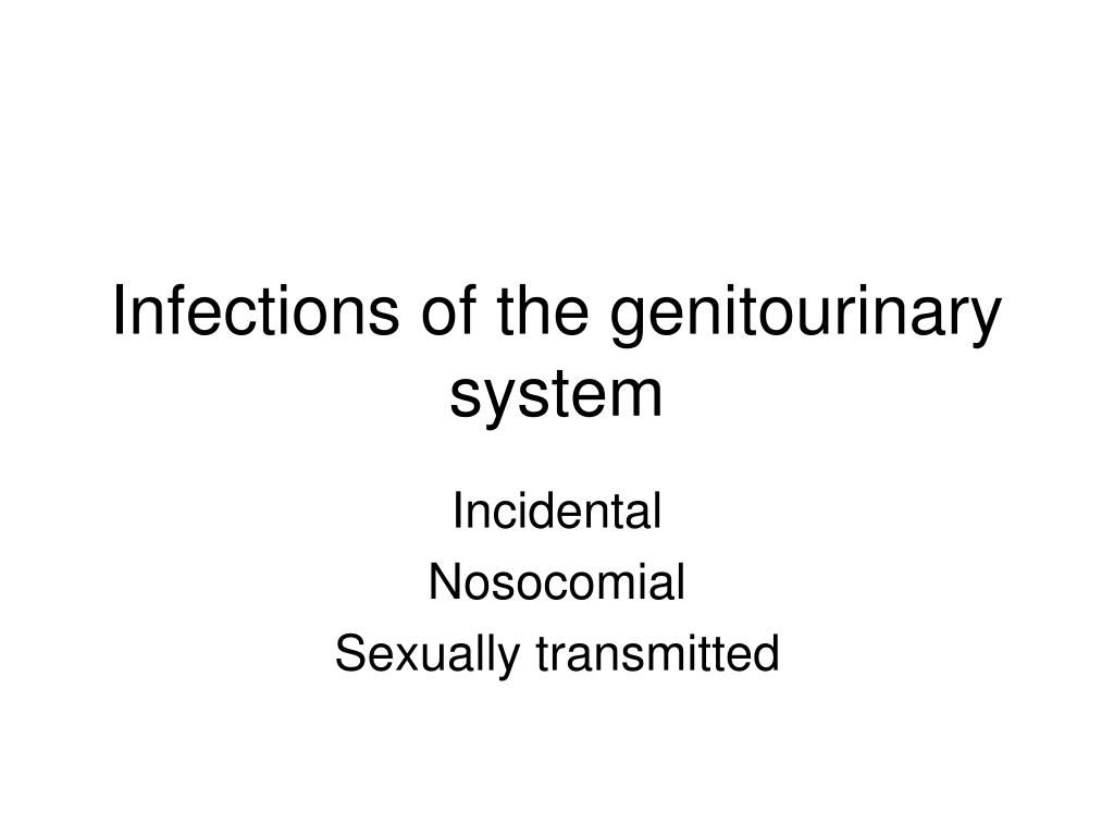 infections of the genitourinary system l.