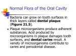normal flora of the oral cavity