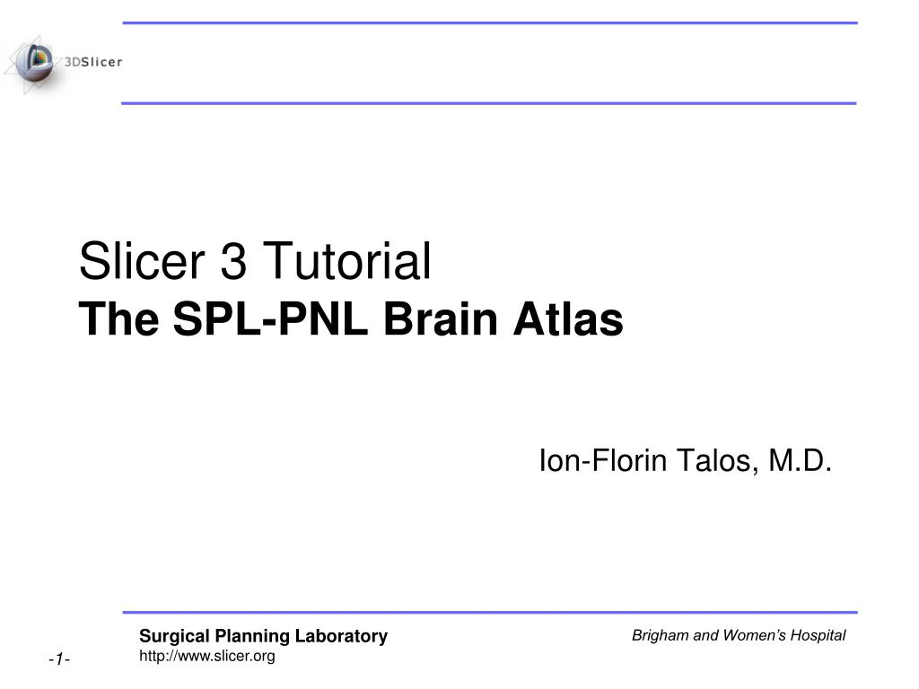 slicer 3 tutorial the spl pnl brain atlas l.