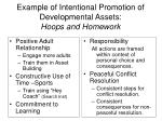 example of intentional promotion of developmental assets hoops and homework