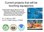 current projects that will be touching aquaponics1
