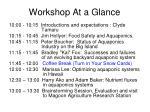 workshop at a glance1