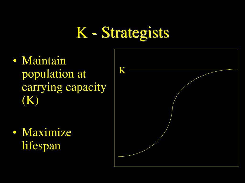 K - Strategists