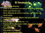r strategists29