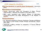 cdm capacity b uilding