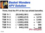 basket wonders apv solution48