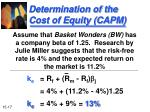 determination of the cost of equity capm