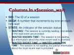columns in v session wait
