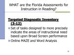 what are the florida assessments for instruction in reading62