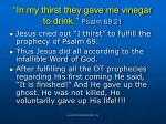in my thirst they gave me vinegar to drink psalm 69 21