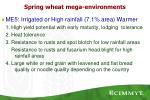 spring wheat mega environments5