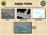 digital firms