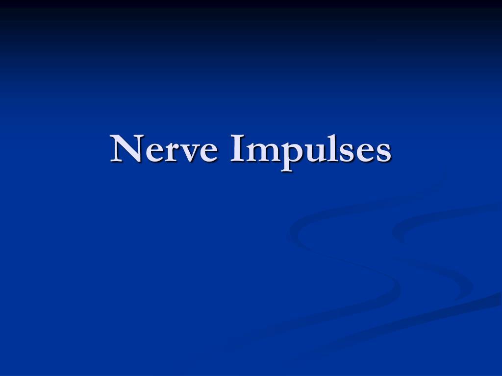 nerve impulses l.