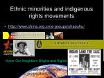 ethnic minorities and indigenous rights movements