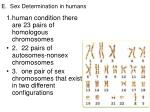 e sex determination in humans