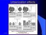 urbanization effects