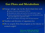 gut flora and metabolism17