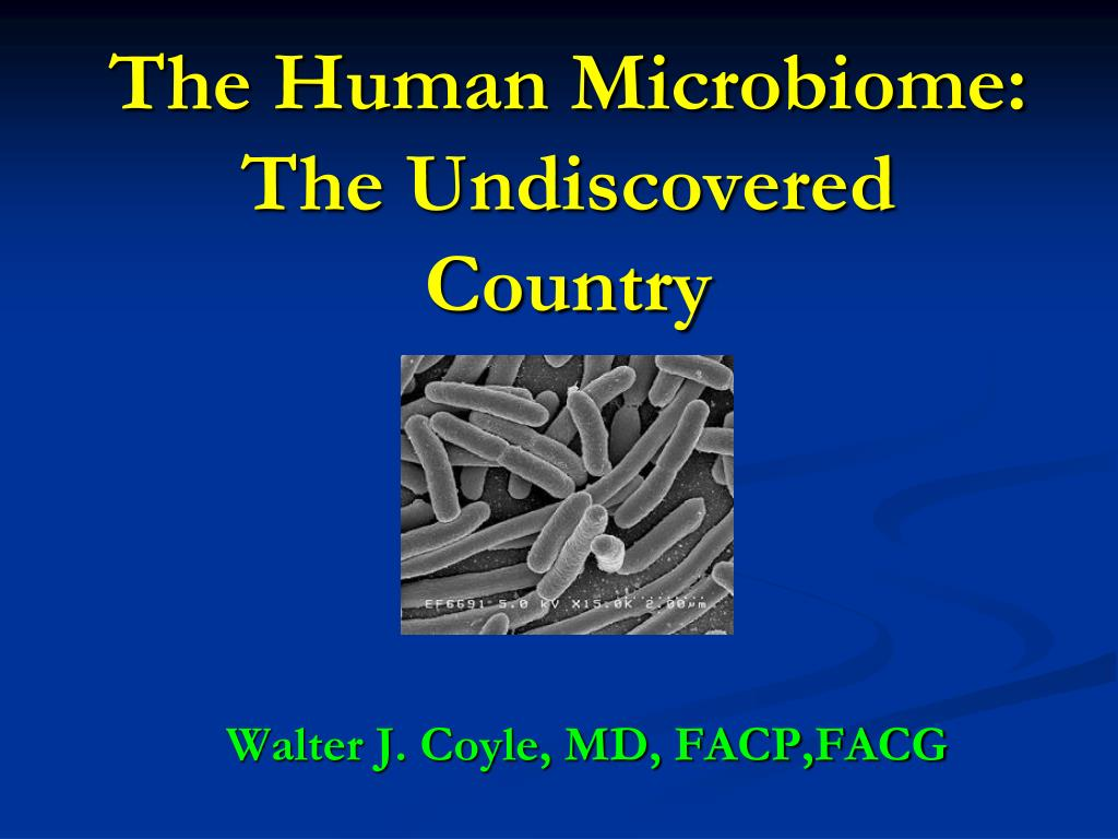 the human microbiome the undiscovered country l.