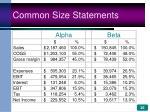 common size statements26