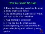 how to prune shrubs