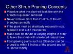 other shrub pruning concepts