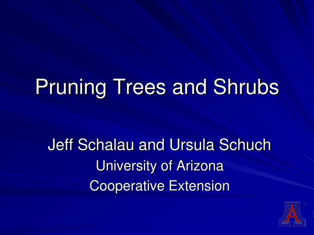 pruning trees and shrubs l.