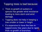 topping trees is bad because14