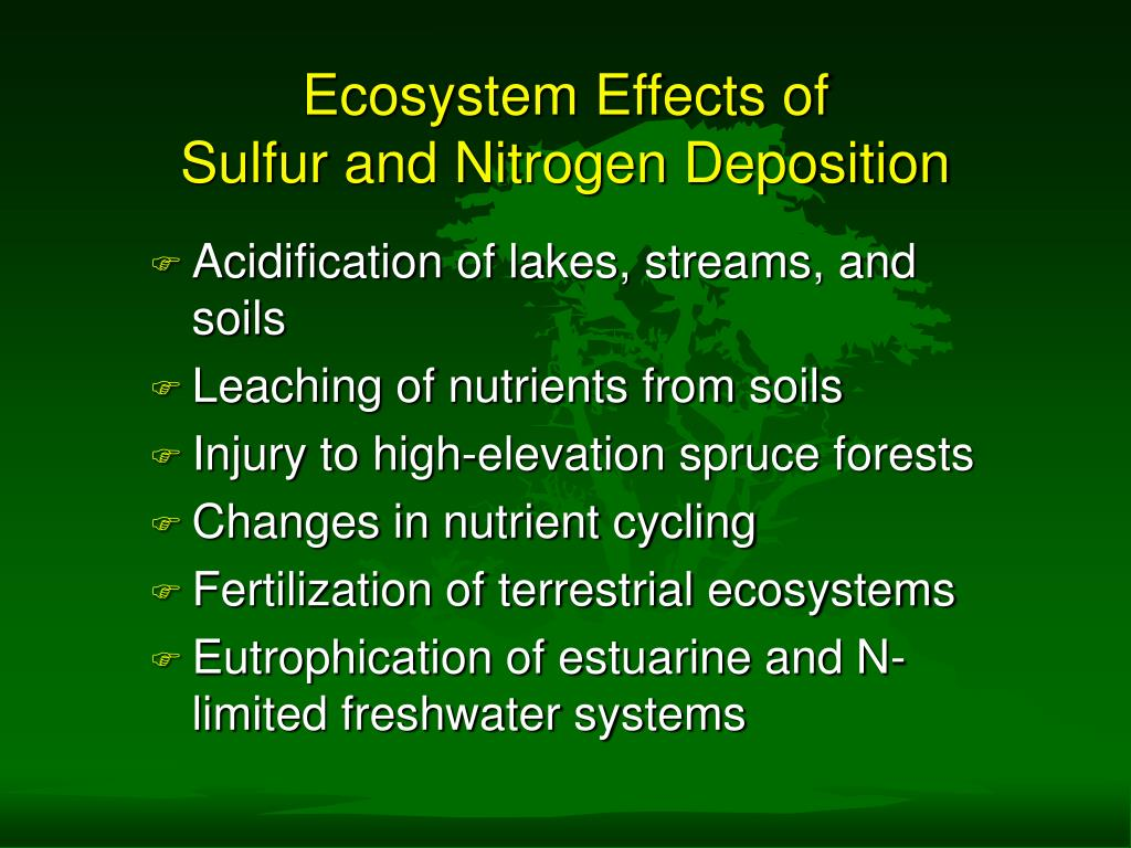 Ecosystem Effects of