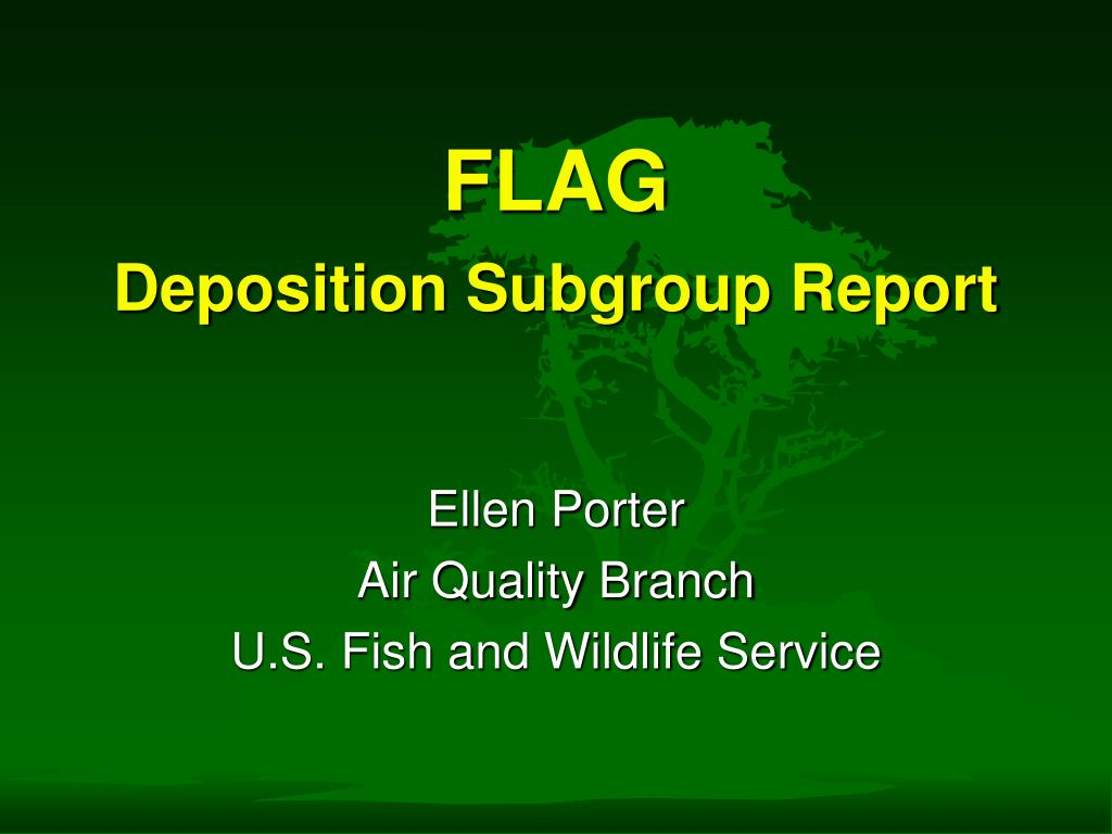 flag deposition subgroup report l.